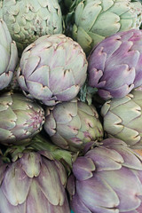 20160422 Provence, France 02542 (R H Kamen) Tags: food france vegetables purple artichoke freshness vaucluse carpentras largegroupofobjects provencealpesctedazur rhkamen