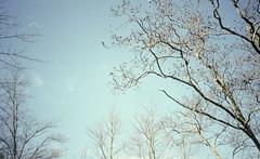 Candace Bonfiglio Photography (candacebonfiglio) Tags: sunset sky color nature clouds kodak hiking massachusetts unitedstatesofamerica colorphotography trails sunsets beverly olympusxa filmphotography colorfilm olympusxa4 kodakporta kodakporta400