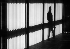 P1160939vf (hans fotografeert) Tags: shadow 2 white black up walking lumix panasonic curtains sillouette lx lined pixelate lamel lx2
