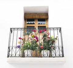 Window with flowers (Poet Mir) Tags: flowers españa flores primavera blanco window ventana spring spain mediterranean mediterraneo balcony alicante altea verano romantic flowerpot eur bohemian balcón