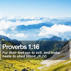 Daily Bible Verse - Proverbs 1:16 (daily-bible-verse) Tags: wisdom motivational picoftheday dailybread