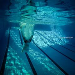 Let's train in Brussels, Belgium (monsieur I) Tags: blue sports water sport europa europe belgium action diving swimmingpool belgian intheair acrobatic acrobaticdiving monsieuri royalbrusselsposeidon