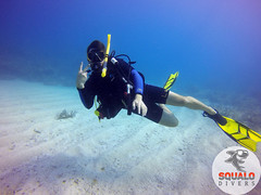 Scuba Dive in Key Largo-April 2016-4 (Squalo Divers) Tags: usa divers key florida scuba diving padi ssi largo squalo