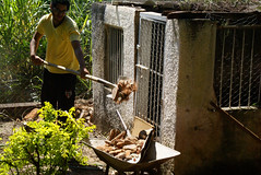 Reforma do Canil - Chcara Tangara (Foto: Naotho) (naothop) Tags: harry potter cu gato linda lingua antena livro gatinho irm concreto pedreiro mostrando
