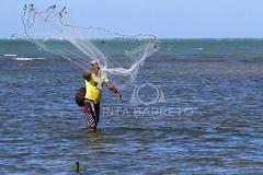 Pescaria (Rita Barreto) Tags: brasil mar pescador oceano nordeste pescaria alagoas tarrafa pontaldopeba piaabuu fozdoriosofrancisco