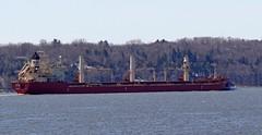 Federal Welland (Jacques Trempe 2,230K hits - Merci-Thanks) Tags: canada river quebec stlawrence welland stlaurent federal fleuve caprouge bulker vraquier