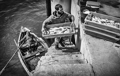 Pescadores (Txetxu Rubio) Tags: portugal pesca cascais pescador txetxurubio