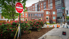 2016.04.30 Vermont Avenue Garden Work Party Washington DC USA  04547 (tedeytan) Tags: dc shaw gardenparty washinton ustreet africanamericancivilwarmemorial vermontavenue exif:make=sony exif:focallength=18mm camera:make=sony exif:aperture=63 exif:isospeed=100 exif:lens=e18200mmf3563 exif:model=ilce6300 camera:model=ilce6300