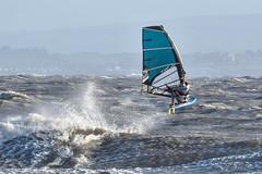 PC310752-Edit (Brian Wadie Photographer) Tags: gulls oystercatcher windsurfing kiting em1 goodlight 14xtc avonbeach canon70300lis hemgistburyhead