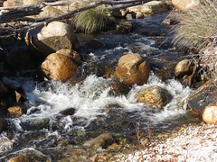 Splashing Water In Sabino Canyon-4 (Chic Bee) Tags: arizona agua rocks tucson stones bubbles boulders naturewalk corriente cascada catalinamountains sabinocanyon splashingwater southwesternusa singingwater pequeñacorrientedeagua