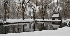 Winter Reflections (tonywild241) Tags: park canada reflection building tree water architecture landscape pagoda pond scenic foliage 1967 townscape oldbuilding mostviewed westerncanada vernonbc canadiancentennial okanaganbc canadianpark alotofwater smallwaters
