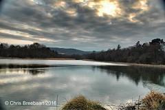 Burton Mill Pond (Chris Breebaart) Tags: england nikond70 burtonmillpond