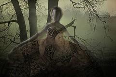 """ TheTune "" (Petra U.) Tags: sculpture dance ballerina tune threetrees"