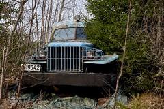 X-T1_11-04-15_17-38-50 (spline_splinson) Tags: overgrown truck se sweden schweden abandon searchlight headlight oldcar oldtruck bluecar abandonedcar bigcar radiatorgrill scheinwerfer lostcar overgrowncar abandoncar vrmlandsln splinson suchlicht