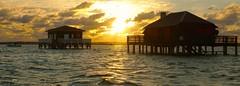 Coucher de soleil sur les Cabanes Tchanques. (patricia.bardon) Tags: sunset naturaleza france nature water photo pentax fotografia ricoh arcachon aquitaine pentaxart patriciabardon pentaxk3