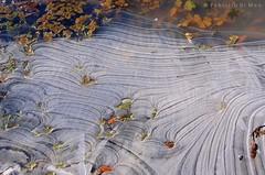 acqua gelata 3 (fabrizio64) Tags: snow ice cielo neve inverno montagna bianco paesaggio ghiaccio appenninocentale