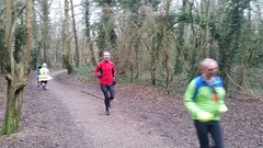 20160213_091833 (AnthonyLester229) Tags: cold wet grey woods running tonbridge parkrun event115 tailrunning 13february2016