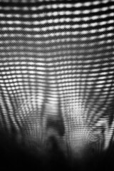 Set Upon (belleshaw) Tags: blackandwhite abstract detail lines grid pattern mesh bokeh sunshade fabric moire opticalillusion encinitasca sandiegobotanicgarden