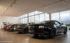 Ford Mustang (Official_Autofragma) Tags: ford car photography brugge automotive move 1967 mustang v8 musclecar 2015 ecoboost autofragma