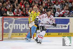 "DEL16 Kölner Haie vs. Krefeld Pinguine 17.01.2016 023.jpg • <a style=""font-size:0.8em;"" href=""http://www.flickr.com/photos/64442770@N03/24844146011/"" target=""_blank"">View on Flickr</a>"