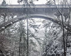 Shepperd's Dell Bridge (Willamette Valley Photography) Tags: bridge trees winter snow tree nature architecture oregon forest outside outdoors woods december snowy january bridges olympus pacificnorthwest gorge snowing