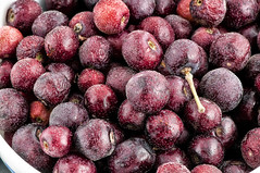 Phalsa a Native fruit from India (Anoop Negi) Tags: food india fruit photography photo good delhi exotic bbc anoop goodfood negi asiatica grewia falsa ezee123 phalsa