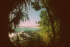 Lomophoto-Finestra sul Paradiso (Life_is_Love81) Tags: beach wonder landscape lomo paradise secretbeach paesaggi paradiso oceano oceanoindiano mirissa srylanka lomophoto