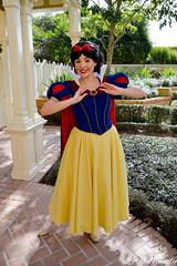 Snow White (disneylori) Tags: mainstreet princess disney disneyworld characters wdw waltdisneyworld snowwhite magickingdom townsquare mainstreetusa disneyprincess snowwhiteandthesevendwarfs disneycharacters facecharacters meetandgreetcharacters