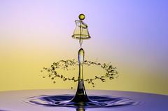 Dreifach (butchinsky) Tags: tat schmid wassertropfen helli skulpturen splitsecond dropart watersculptures helmutschmid waterdropart waterdropphotography tropfenfotografie tropfenfoto tropfenauftropfen dropingwater butchinsky tropfenskulpturen catchtheclimpse