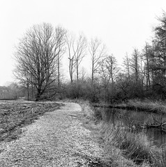 Superpan200_Meerhout-3 (Jensdh) Tags: film:iso=200 ilfordilfotecddx rolleisuperpan200 developer:brand=ilford developer:name=ilfordilfotecddx film:brand=rollei film:name=rolleisuperpan200 filmdev:recipe=10677