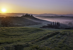Between countryside of Val D'Orcia at sunrise (Massetti Fabrizio) Tags: red sun green fog rural sunrise countryside tuscany siena pienza toscana valdorcia cambo rodenstock phaseone sanquirico iq180