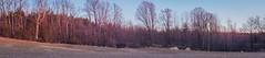Treeline Panoramic Sunset (Marc Filice) Tags: pink trees light sunset sky sun ontario canada colour tree nature field contrast forest canon point outside outdoors spring glow shadows view wide panoramic t3i aspect