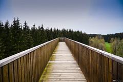 one way... (vreny_) Tags: bridge sky nature way austria sterreich nikon outdoor natur himmel d750 architektur brcke holz wald autriche weg himmelsleiter pfad