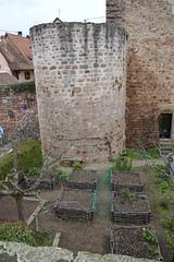 Obernai (JGHill) Tags: france architecture spring stonecarving alsace alsatian vosges obernai basrhin halftimbred
