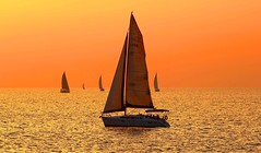 sailing at the golden hour - Tel-Aviv beach (Lior. L) Tags: sunset sea beach golden sailing sail sailboats