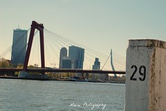 Rotterdam Skyline (Mone-Photography) Tags: skyline architecture rotterdam willemsbrug erasmusbrug erasmusbridge