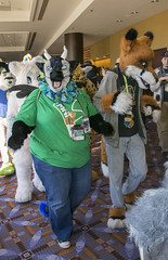 _DSC0513 (Acrufox) Tags: midwest furfest 2015 furry convention december hyatt regency ohare rosemont chicago illinois acrufox fursuit fursuiting mff2015