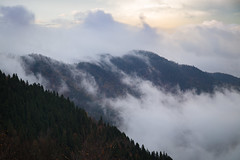 The peak window (RKAMARI) Tags: autumn trees mountains cold colour fall nature fog clouds forest landscape nationalpark peak bolu yedigller