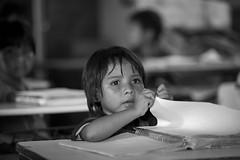 046__MG_7516_PHZ (Ncleo Pedaggico - DER Miracatu) Tags: green professor projeto ensino aldeia indgena comunidade educao eei miracatu escolaestadual dermiracatu diretoriadeensino escolaestadualindgena educaoescolarindgena aldeiakoeju fotografiapaulohenriquezioli