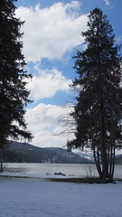 P3132311 () Tags: france germany colmar titisee