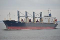 Cygnus (Bernhard Fuchs) Tags: water boot boat nikon ship ships cargoships vessel cargo schiff carrier elbe schiffe bulk cuxhaven frachtschiff frachtschiffe bulker