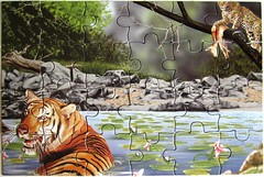"Puzzle Book ""Big Cats"" (Leonisha) Tags: tiger puzzle leopard bigcats jigsawpuzzle grosskatzen"