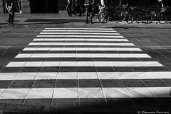A zebra crossing in Bologna (Eleonora Cacciari) Tags: city blackandwhite bw crossing bn via bologna zebra bianco biancoenero citt emiliaromagna bolognese camminare rizzoli viarizzoli attraversare a blackandwhiteshot viarizzolibologna cittdibologna eos1200d eleonoracacciari azebracrossinginbolognashotbyeleonoracacciari