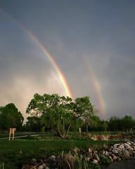 Rainbow (K Fogle Photography) Tags: sunset lake storm clouds evening spring twilight nebraska holmeslake