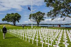 Remembering the war fatalities. (firstfire53) Tags: newzealand devonport