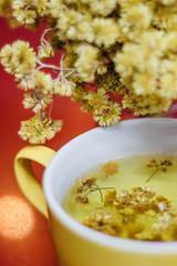 Macela (Ju Bomju) Tags: flower tea flor cor caneca paleta ch macela