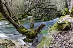 Su Gologone (Moris Photo) Tags: sardegna longexposure long exposure fiume nuoro sugologone oliena gologone