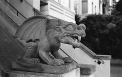 Gargoyle, Lower Haight, SF (bclook) Tags: sanfrancisco leica bw monochrome zeiss 35mm noiretblanc kodak trix d76 kodaktrix f2 schwarzweiss leicam6classic selfprocessed m6 biogon 352 filmisnotdead istillshootfilm bwfp