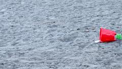 IMG_1306810 (Uday Pratti) Tags: seattle summer redmond sammamish lakesammamish idylwoodpark