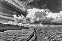 Movements (Alfred Grupstra Photography) Tags: sea sky blackandwhite bw water clouds movement nederland nl dike noordholland hippolytushoef